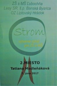 Strom Madlenakova