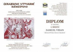 VO diplom Gorazdovo N Vidan